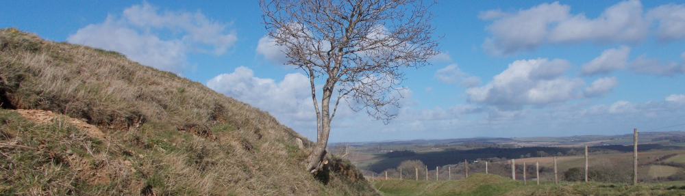 Fact and fiction in The Last Kingdom | Cornish studies resources